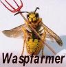 waspfarmer
